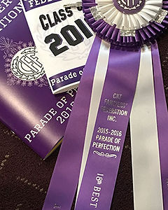 cff annual award 2015-2016.jpg