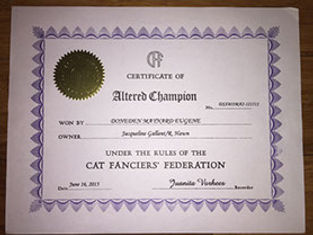 certificate of altered champion mayard.j