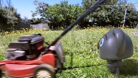 Harry chases the lawn mower.