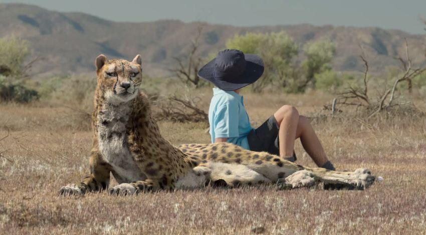 Woolworths-cheetah-TVC-breakdown2.jpg
