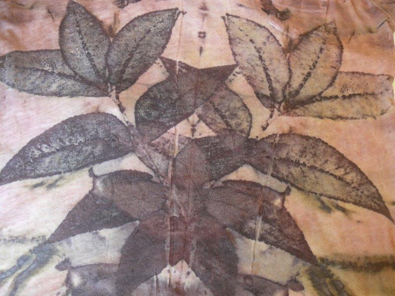 Eco print on cotton