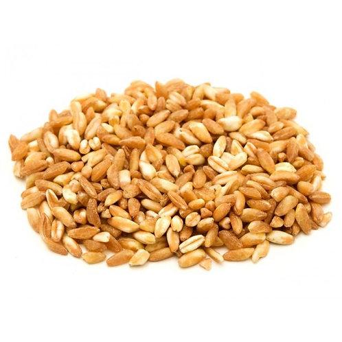 Farro Grains, Lb.