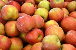 apples_pinklady