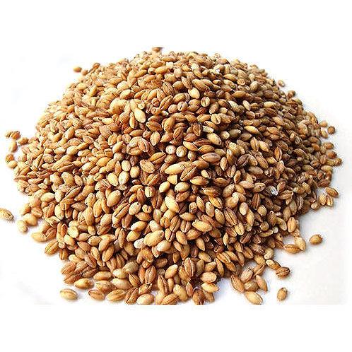Garbanzo Beans - Lb. Dry