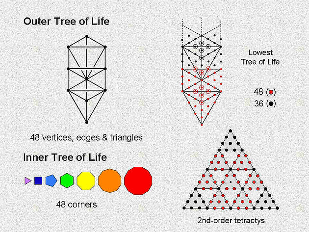 Tree of life superstring theory part 120 | Home | 64