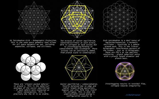 tree of life superstring theory part 27