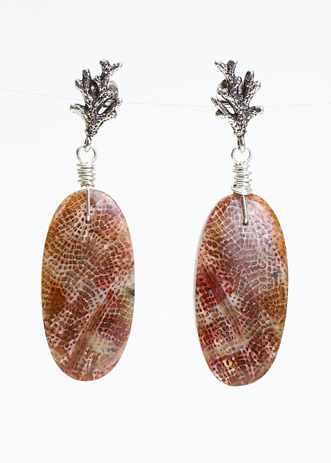 Hand Drilled Fossilized Coral Stud Earrings