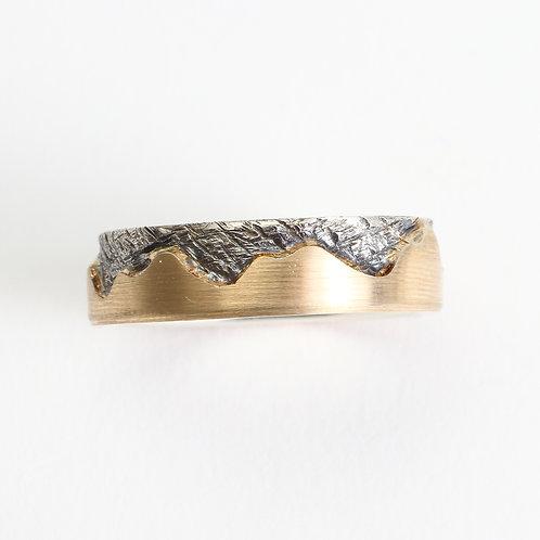 Blue Ridge Mountain Band - Thin- Gold & Silver