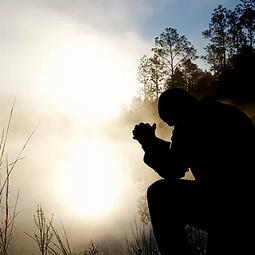 Submissive Faith: Reflections on Matthew 7:13-16