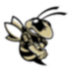 sprayberry yellow jacket.png