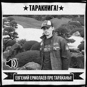 Евгений Ермолаев про «Тараканы!»
