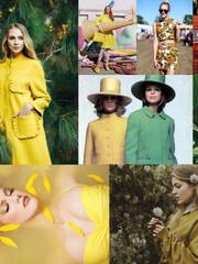 flamboyant-yellow-inspiration.jpg