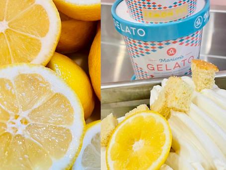 Introducing Marion's Gelato new Lemon Pie Flavor!