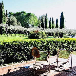 terrace and olive groves at villa de labrugiere lacoste