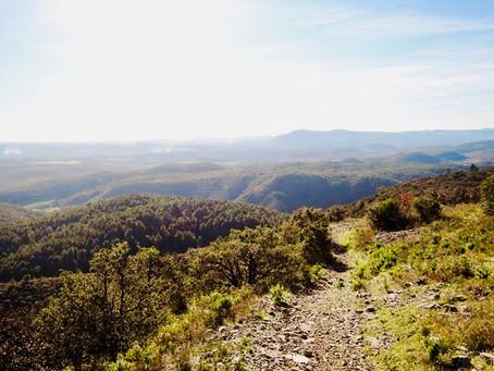 Lacan : Randonnée facile près d'Anduze / Easy hike near Anduze