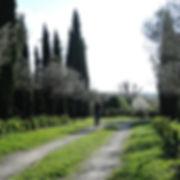 le chemin dans la propriété