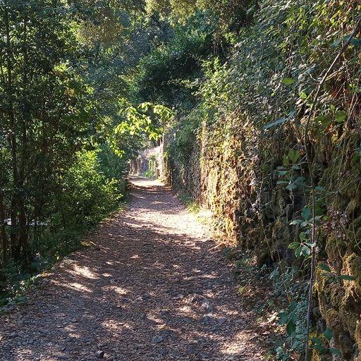 chemin sur la balade le long de la riviere à mialet