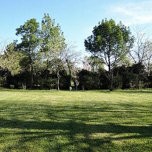 large lawn in countryside villa de lablac