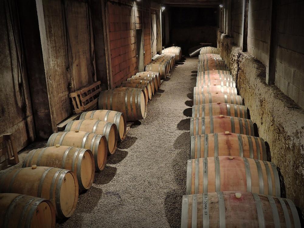 Barriques en chêne dans le chai du domaine viticole
