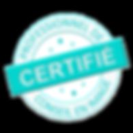 Site professionnel certifié de diagnostic de morphologie et conseils vestimentaires pour mettre en valeur votre silhouette