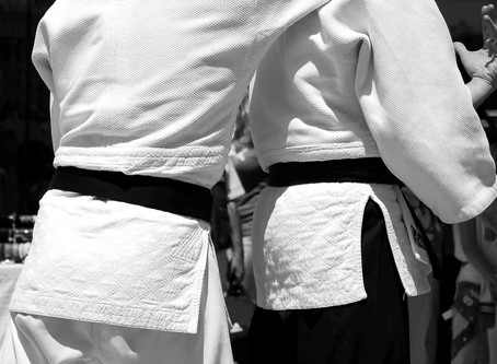 BJJ Belts/Grades - Why is it Worth it and Who Really Cares?