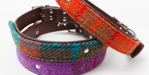 Luxury Harris Tweed & Leather collars from Brodies