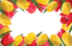 TulipBorde-HalfPage.png