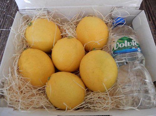 鴨川レモンのレモンチェロセット