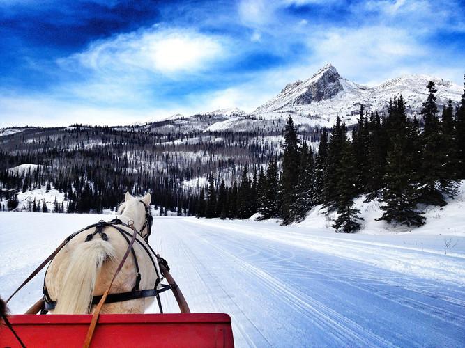 December Sleigh Ride.jpg