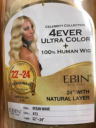 Ebin 4EVER Ultra Color + Human Hair Lace Front Wig