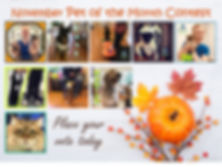 Pet of the Month November Poster.jpg