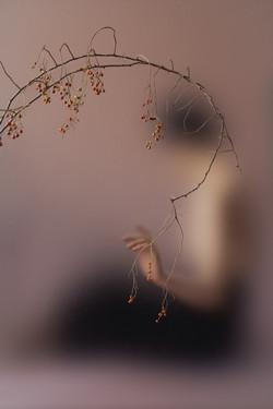 Ziqian Liu