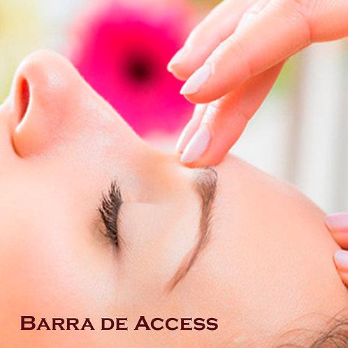 Barra de Access (1h00)