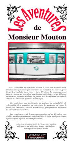 """Présentation """"Mr Mouton"""""""