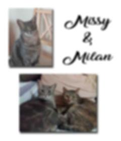 Missy & Milan copie.jpg