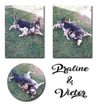 Victor et Praline copie.jpg