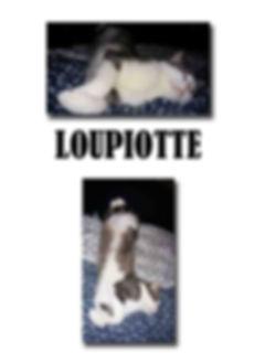 LOUPIOTTE copie.jpg