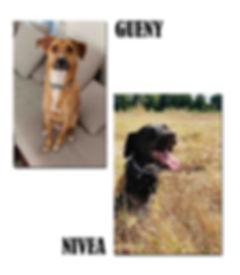 GUENY ET NIVEA copie.jpg
