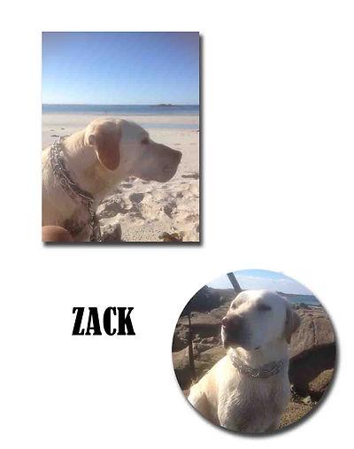 ZACK copie.jpg