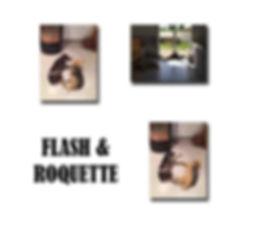 FLASH ET ROQUETTE copie.jpg