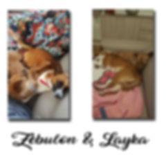 Zebulon & Layka copie.jpg