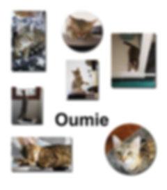 Oumie 21 10 18 copie.jpg