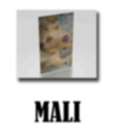 MALI copie.jpg