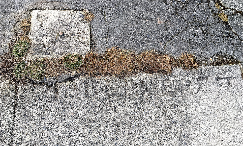 Windermere Sidewalk