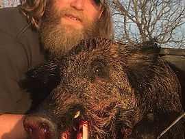 Texas hog hunting