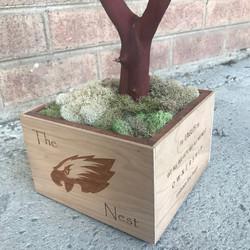 Eagles team custom base