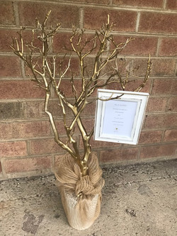 gold frame tree