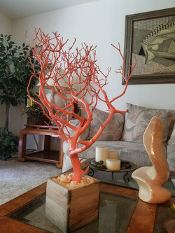 coral tree as home decor