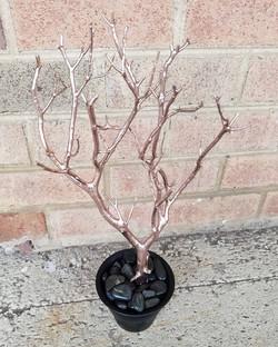 Tree mini rose