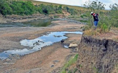 Mara River in Kenya runs dry